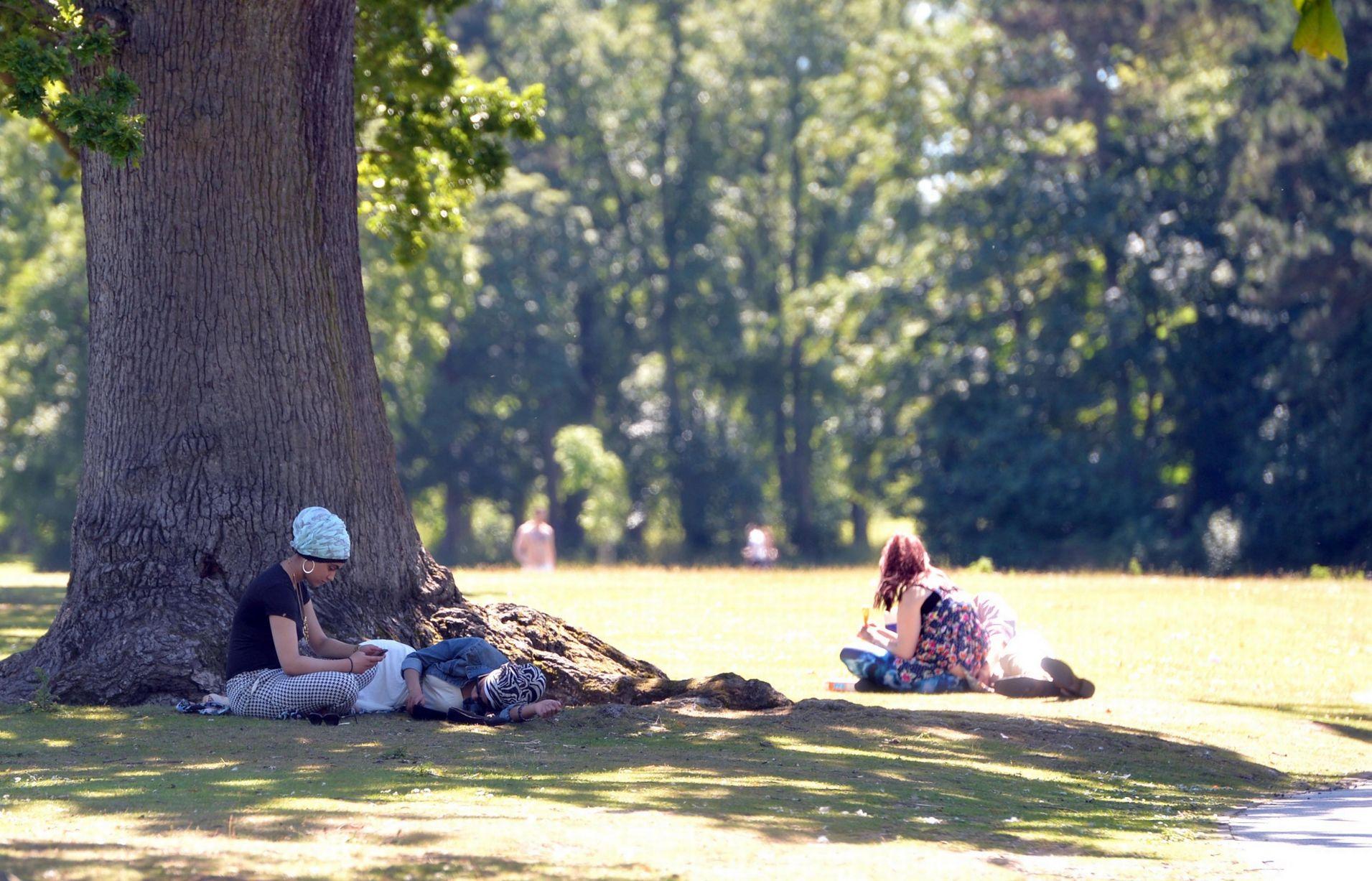 avrupa rüyası ingiltere birmingham Cannon Hill Park