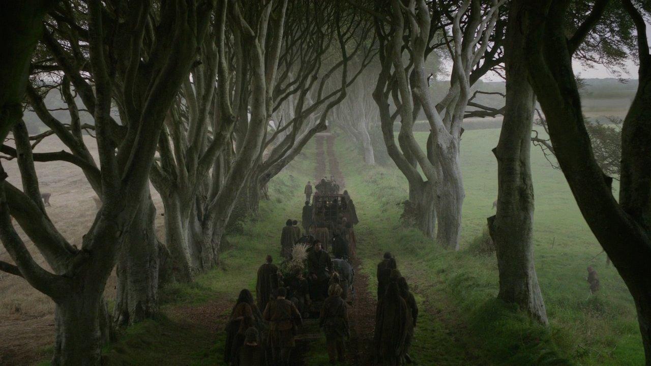 kuzey irlanda the dark hedges